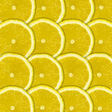 Lemon fruit background Royalty Free Stock Photos