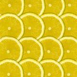 Lemon fruit background Royalty Free Stock Photos