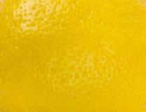 Lemon fruit background Stock Photos