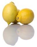 Lemon Fruit VI Royalty Free Stock Photography