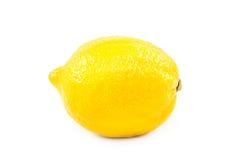 Lemon fruit on white background. Stock Image