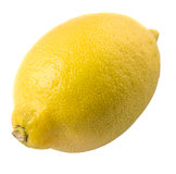 Lemon Fruit XII Stock Image