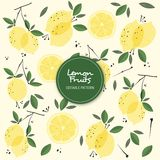 Lemon Fruits Editable Background Pattern royalty free illustration