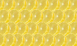 Lemon fruits slice abstract seamless pattern Stock Images