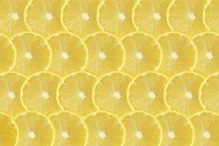 Lemon fruits slice abstract seamless pattern Royalty Free Stock Image