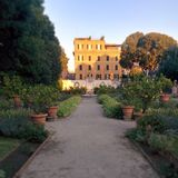 Lemon garden villa borghese Stock Images