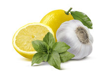 Lemon garlic basil pesto ingredients isolated on white backgroun Royalty Free Stock Images