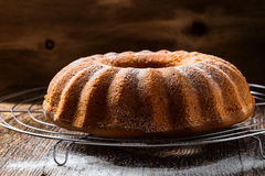 Lemon ginger bundt cake Stock Photography