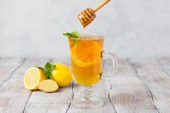 Lemon ginger tea in glass with mint and honey on a white background. Mint leaves, lemons, honey dipper. stock photo