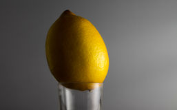 Lemon in glass Royalty Free Stock Photography
