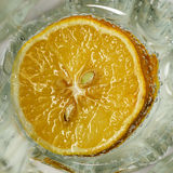 Lemon in a glass Stock Photography