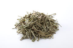 Lemon grass. On white background stock image