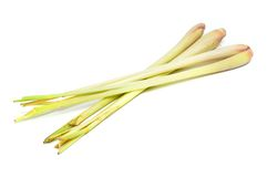 Lemon grass Stock Images
