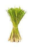 Lemon grass. Bundle of lemon grass on white background Stock Photo