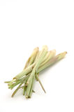 Lemon grass Stock Image