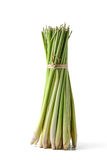 Lemon grass bundle Royalty Free Stock Image