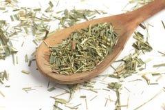 Lemon Grass. Cymbopogon citratus. Capim Limao, Santo. Stock Photos