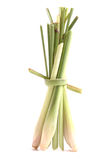 Lemon grass isolated on white Royalty Free Stock Photo
