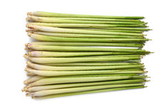 Lemon grass Royalty Free Stock Image