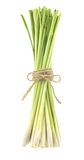 Lemon grass isolated on white. Lemon grass -herb vegetable isolated on white background stock images