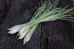 Lemon grass. On old plank royalty free stock photography