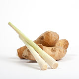 Lemon grass and root ginger Royalty Free Stock Photography