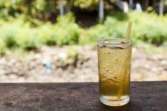 Lemon grass water Royalty Free Stock Images