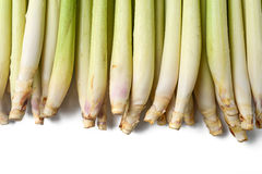Lemon grass Stock Photo