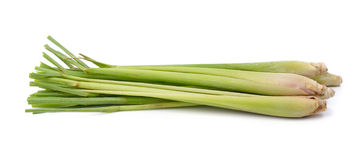 Lemon grass on white background Royalty Free Stock Images
