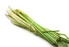 Lemon grass on white. Bundle of lemon grass on white background Royalty Free Stock Photography