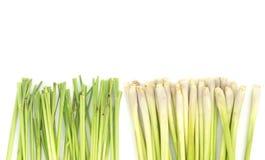 Lemon grass  on white Royalty Free Stock Image