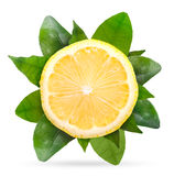 Lemon with green leaves isolated on white background Stock Photography