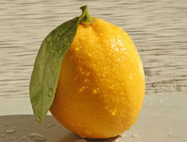 Lemon on a grey background Royalty Free Stock Image