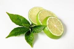 Lemon. Group of lemon on white background Royalty Free Stock Photos
