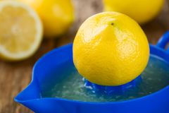 Lemon Half on Citrus Squeezer royalty free stock image