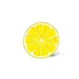 Lemon half cut circle citrus fruit color sketch Stock Photography