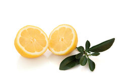 Lemon Halves Royalty Free Stock Images
