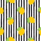 Lemon hand drawn sketch striped Seamless Pattern. Vector Illustration. Royalty Free Stock Photography