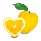 Lemon heart Stock Photography