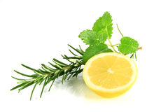 Lemon with herbs Stock Images