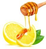 Lemon and honey Royalty Free Stock Images