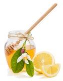 Lemon honey Stock Photo