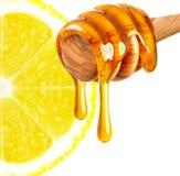 Lemon with honey Stock Photography