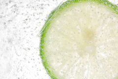Lemon In Ice background Royalty Free Stock Photos