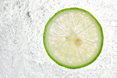 Lemon In Ice background Royalty Free Stock Photo