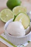 Lemon Ice Cream. Homemade Lemon Ice Cream in bowl Royalty Free Stock Photos
