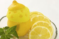 Lemon ice cream Stock Images