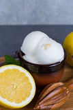 Lemon ice cream sorbet served for dessert with mint leaves and l. Lemon ice cream sorbet served for dessert on wooden plank in small bowl Stock Photo