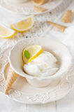Lemon ice-cream Stock Images