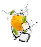 Ice fruit Royalty Free Stock Image